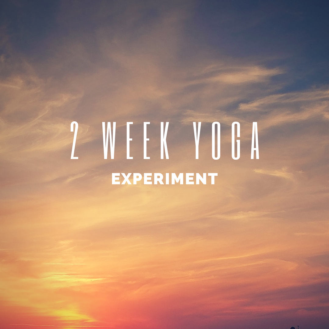 What Happens When You Get Free Yoga?